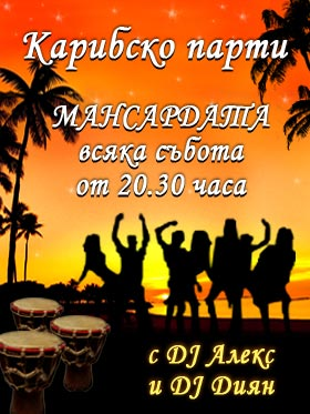 Salsa Party на Мансардата